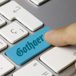 Erfolgsgeschichte: Gothaer Finanzholding AG